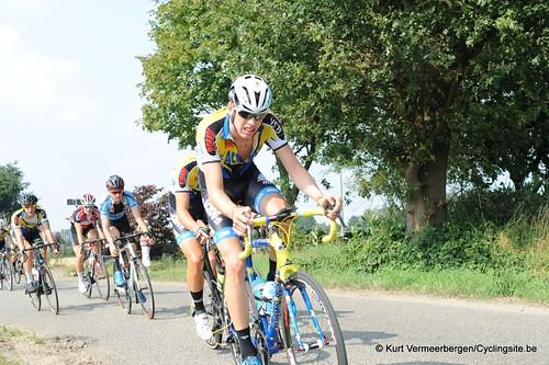 Geel Oosterlo  (107)
