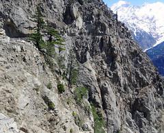 The dangerous road to Roghi. (draskd) Tags: india nature landscape shimla sony himachalpradesh mountainscape kinnaur suicidepoint kalpa hillroads roghi dangerousroads recongpeo sonyhx9v roadsofhimachal roadtoroghi placesforsuicide roghicliffs