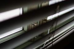 7631_1 ([] kikistory.com) Tags: light shadow window korea seoul kiki southkorea    republicofkorea    kikistory rpubliquedecore poblachtnacir