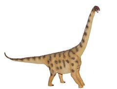 Argentinosaurus (Zachi Evenor) Tags: scale toy model dinosaur dinosaurs scalemodel sauropod argentinosaurus sauropoda דגם דינוזאור דינוזאורים argentinosaurushuinculensis zachievenor titanosauria huinculensis ארגנטינוזאורוס זאורופודה זאורופוד