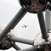 Brussels Airlines Airbus A330 OO-SFO naar Dakar