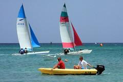 1-IMG_5180 (eric15) Tags: kite beach sailboat race cat surf sailing wind yacht offshore competition surfing racing aruba international catamaran sail windsurfing regatta optimist sunfish 2014