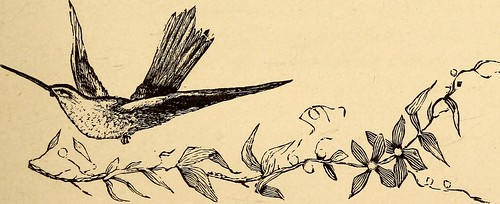 "Image from page 396 of ""American etiquette and rules of politeness"" (1883)"