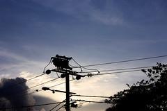 Powerline, Darwin (betadecay2000) Tags: sonnenuntergang australia darwin powerline australien northernterritory insulators hochspannung isolator insulator hochspannungsleitung stromleitung sunsest isolatoren pearystreet