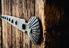 Belleza Protectora (Walimai.photo) Tags: door wood detalle detail texture textura metal puerta madera nikon shell concha 18105 d7000