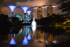 Singapore at night (https://www.facebook.com/ArrrrtDesignPhotography) Tags: gardens by marina bay singapore bee sands supertree supertrees