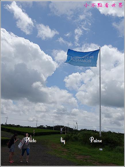 濟州島innisfree館 綠茶博物館 (54).JPG