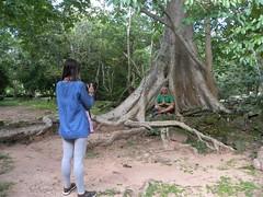 Angkor Thom - 064 (txikita69) Tags: cambodia khmer angkorwat siemreap angkor taprohm bayon angkorthom banteaykdei camboya thommanon bakseichamkrong phnomkrom khmerempire tonlesap terrazadeloselefantes banteaysamre regencyangkorhotel