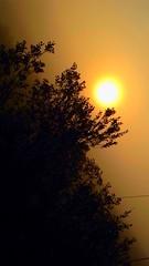#shadow #lanscape #morning #early #sunrise #sun #cool #nature #photographer #walk #school #photo (julia_bergendahl) Tags: morning school shadow sun nature sunrise early photo cool photographer walk lanscape