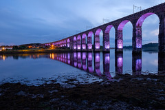 Royal Border Bridge Illumination II by kennysarmy, on Flickr