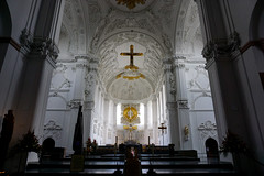 Würzburg cathedral interior