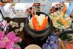 sample, Dotonbori, Osaka (jtabn99) Tags: japan sample vendingmachine osaka dotonbori