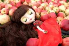 Red Delicious Blythe 3