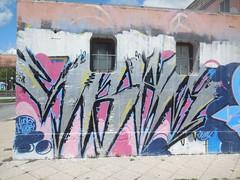 lucky muori (en-ri) Tags: muro wall writing graffiti blu rosa jessy nero argento savona sbam