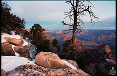 Grand Canyon, Arizona (lokthefish) Tags: travel arizona usa nikon kodak grandcanyon portra nikonfm2 fm2 2012 160
