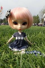 (Miss-Grant) Tags: doll wig kawaii pullip leeke stica