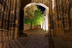 Brama Zygmunta | Sigismund Gate