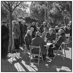 Retired I | Barcelona (Flemming J. Gade) Tags: retired seniors playingcard whitedog bw barcelona squareformat