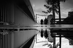 urban romance (maekke) Tags: zürich couple romance reflection puddlegram symmetry pointofview pov silhouette bw noiretblanc 35mm fujifilm x100t switzerland ch 2017 streetphotography urban
