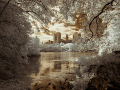 The Lake - Framed (Adventures in Infrared) (Torsten Reimer) Tags: usa window northamerica see water newyork centralpark lake clouds leaves unitedstatesofamerica infrared nyc newyorkcity boats buildings infrarot olympusepl5 trees unitedstates us