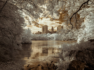 The Lake - Framed (Adventures in Infrared)