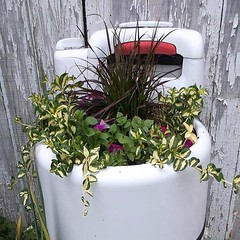Planter-Washer-Wringer (DougBittinger) Tags: