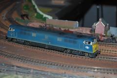 A BR Blue Western on Kenham