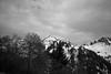 "La montagna suona Burzum • <a style=""font-size:0.8em;"" href=""http://www.flickr.com/photos/49429265@N05/14337036791/"" target=""_blank"">View on Flickr</a>"