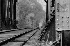 Down The Tracks (Minolta 505si, AgfaPhoto APX 100) (baumbaTz) Tags: railroad bridge blackandwhite bw slr film monochrome analog germany deutschland iso100 blackwhite rust minolta atl traintracks tracks ishootfilm 150 m42 scanned apx100 april epson sw analogue dynax monochrom grayscale pentacon agfa rodinal schwarzweiss brücke rost 19 apx analogphotography 505 2200 greyscale 2014 schienen 200mm niedersachsen lowersaxony filmphotography jobo fpp ilovefilm v500 505si adox adonal filmisnotdead autolab vuescan analoguephotography agfaphoto bremervörde minoltadynax505sisuper istillshootfilm bremervoerde filmforever pentacon200mm epsonv500 agfaphotoapx100 adoxadonal filmphotographyproject adofix believeinfilm atl2200 joboautolabatl2200 20140419 ostebrücke