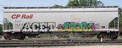 (LadyBench) Tags: train graffiti winnipeg rail trains rails freight fr8 benching ladybench