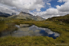 torbiera d'alta quota, high altitude peat-bog (paolo.gislimberti) Tags: reflections riflessi mountainlandscape paesaggiodimontagna alpineenvironment alpinegrassland prateriaalpina ambientealpino paesaggilandscapesmontagnemountains