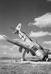 A German Focke-Wulf FW 190A-8 fighter lies abandoned on an airfield liberated by British troops at Steen Okkerzeel, north east of Brussels, Belgium.
