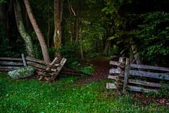 Shenandoah National Park (lezlievachon) Tags: