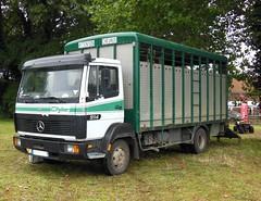 MERCEDES 914 Cityliner Van à chevaux (xavnco2) Tags: france truck mercedes lorry camion mercedesbenz trucks van fête picardie chevaux 914 lkw 2014 somme autocarro horsebox cityliner épénancourt