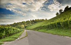 Rotenberg (DelightTurkish) Tags: blue sky green clouds landscape stuttgart himmel wolken grn blau landschaft vinyards rotenberg weinberge