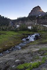 Glacier National Park, Montana (Millron) Tags: waterfall glacier glaciernationalpark horn grizzly loganpass bearhat