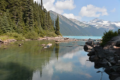 Hike to Garibaldi Lake (Shaken, not stirred 2013) Tags: park flowers lake black water sphinx turquoise meadows columbia glacier alpine taylor british coloured garibaldi provincial tusk