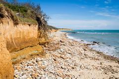 Jard sur Mer (SebastienToulouse) Tags: ocean mer france fleur sable vague vendee falaise plage rocher atlantique jard paysdelaloire jardsurmer