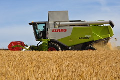 Claas Lexion 750 Combine Harvester cutting Winter Barley (Shane Casey CK25) Tags: county ireland winter red horse irish green field barley work golden hp corn power cut farm cork farming grain working harvest straw till crop combine cutting land crops farmer blade agriculture dust pulling contractor chaff collect blades harvester collecting tilling harvesting 750 claas agri lexion conna tillage