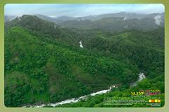 Silent Valley---------------15 (Binoy Marickal) Tags: india green tourism nature water rain kerala mala palakkad evergreenforest treaking silentvalleynationalpark nilgirihills mannarkkad mukkali kuzhur indiabinoymarickal
