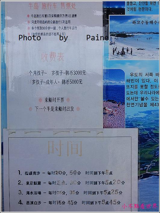濟州島 牛島一日遊 (41).JPG