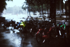 "Rain • <a style=""font-size:0.8em;"" href=""http://www.flickr.com/photos/92529237@N02/14871848966/"" target=""_blank"">View on Flickr</a>"