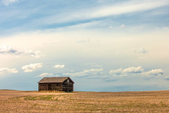 Prairie Shed (www.toddklassy.com) Tags: wood old blue roof sky brown house west building abandoned beautiful field horizontal architecture clouds barn rural vintage dark landscape countryside wooden montana solitude alone mt exterior antique farm grunge horizon country farming rustic shed property dry nobody farmland dirty retro western despair lonely homestead aged concept prairie copyspace agriculture sorrow decline arid isolated fallow kremlin dilapidated stubble brokendown vast disrepair wideopen lonesome greatplains hillcounty colorimage