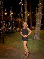 Minidress & Heels in Hawaii (Kim Cums) Tags: sexy public outdoors hawaii highheels dress legs blonde heels collar slutty collared minidress braless pleaser pantieless flickrsafe kimcums