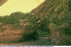 2014-06-01 175 (Badger 23 / jezevec) Tags: june rock stone roc rocks taiwan kii geology formosa 台灣 kina 臺灣 rocas roches felsen 2014 rotsen rochas roccie 岩石 jezevec 中華民國 republicofchina 섬 βράχοι утесы 湾 republikken 바위 福爾摩沙 tajwan تايوان tchajwan 타이완 тайвань đàiloan ταϊβάν republikchina thòivàn טייוואן taivāna taívan தாய்வான் تەيۋەن 20140601