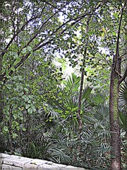 3211093619_8bbee2b657_o (gray.florie) Tags: allrightsreserved usewithoutpermissionisillegal ©2009florencetomasulogray florencegray floriegrayflorencetomasulograytomasulofloriegrayfloriegraycom