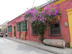 Cartagena-32
