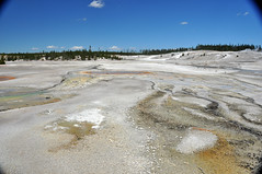 Constant Geyser (7 July 2014) 2 (James St. John) Tags: hot spring basin springs yellowstone wyoming geology geyser porcelain norris geysers hot spring springs basin porcelain norris basinconstantconstant