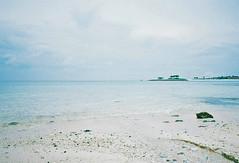 Okinawa (miki-re) Tags: travel sea summer film beach japan natura okinawa 夏 沖縄 旅行 klasse 海洋博公園 エメラルドビーチ