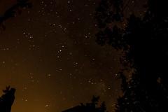 20140822-DSC_1903 (wacamerabuff) Tags: camping camp washington scout bsa campparsons